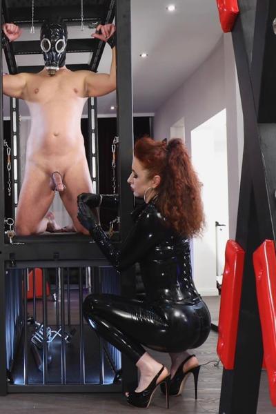 Latex Lady SOPHIA stretching foreskin