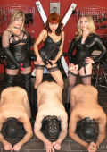 Thre dominas and three slaves in the dungeon